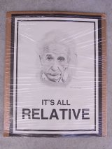 アンティーク ウォールオーナメント ポスター アインシュタイン IT'S ALL RELATIVE 相対性理論 ビンテージ