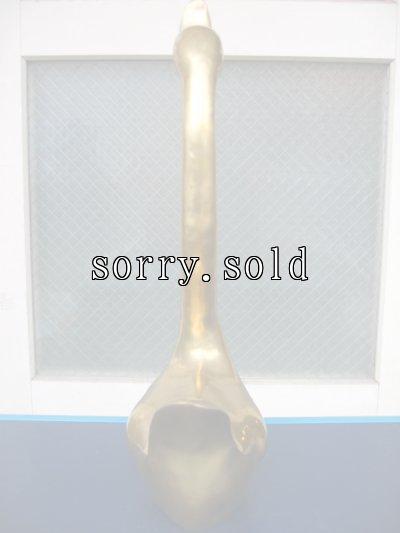 画像4: 真鍮オブジェ スワン 白鳥 特大 ブラス アンティーク ビンテージ