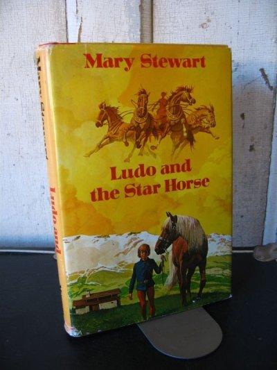 画像1: 1970's 洋書 Mary Stewart Ludo and the Star Horse 1974 古書 アンティーク ビンテージ